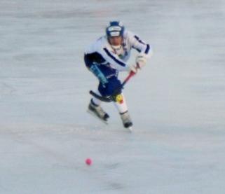 71 Johan Malmqvist Villa Lidköping