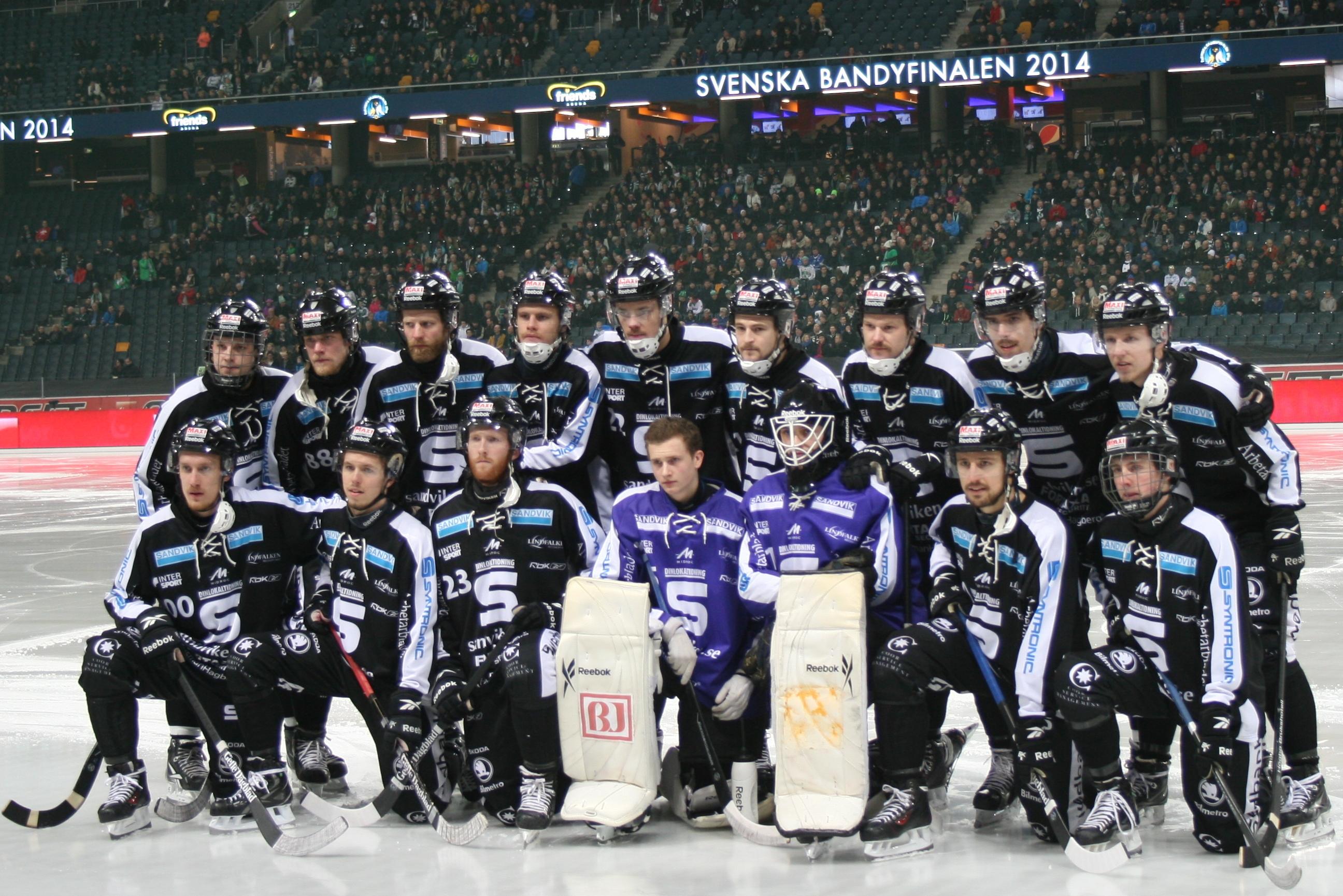 Sandviken AIK 2014 SM-Guld